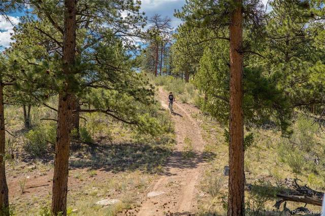 14433C Elk Creek Road, Pine, CO 80470 (MLS #7720119) :: The Sam Biller Home Team
