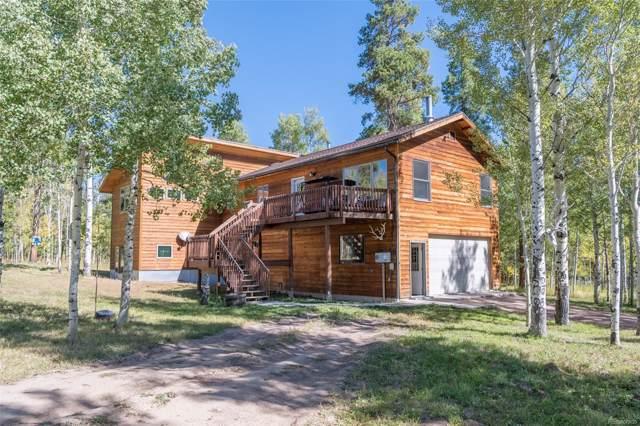 32930 Colt Trail, Oak Creek, CO 80467 (#7728358) :: The DeGrood Team