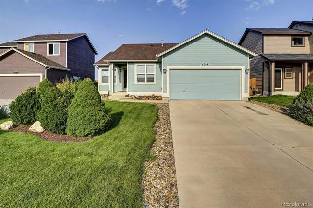 4019 Roan Drive, Colorado Springs, CO 80922 (#7731906) :: The Margolis Team