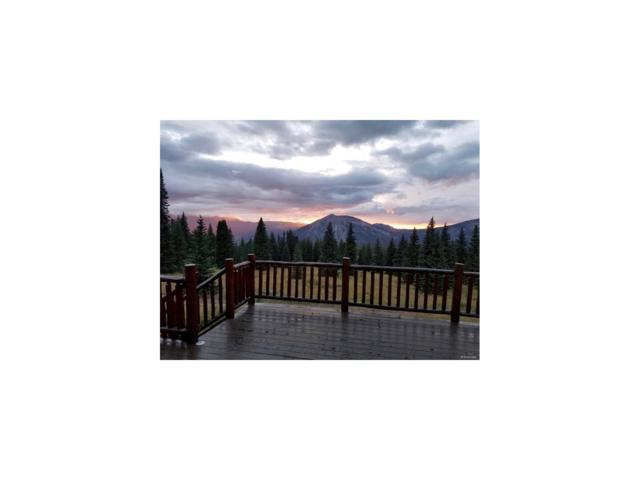4500 Forest Service Road 563, Crested Butte, CO 81224 (MLS #7736056) :: 8z Real Estate