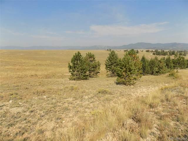 557 Shenandoah Path, Hartsel, CO 80449 (MLS #7736246) :: Find Colorado