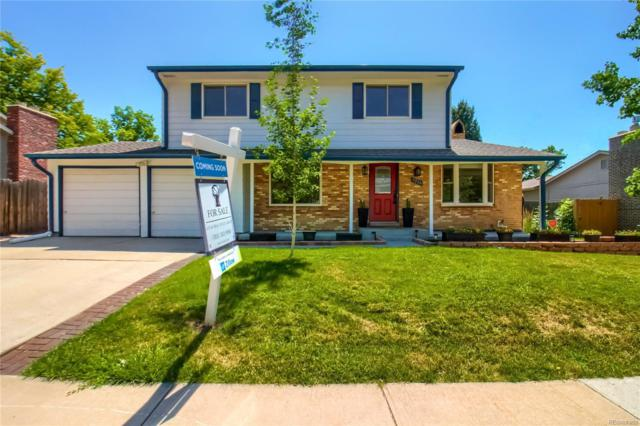 8216 Lamar Drive, Arvada, CO 80003 (#7738774) :: 5281 Exclusive Homes Realty