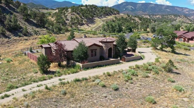 8129 Buck Run, Salida, CO 81201 (#7739743) :: The Galo Garrido Group