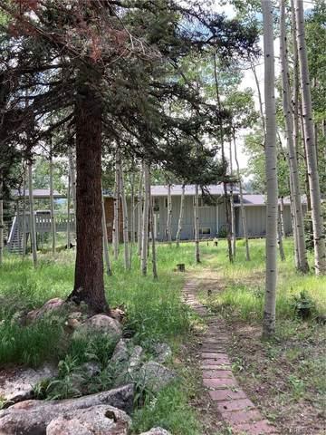 12891 Callae Drive, Conifer, CO 80433 (#7742156) :: Hudson Stonegate Team