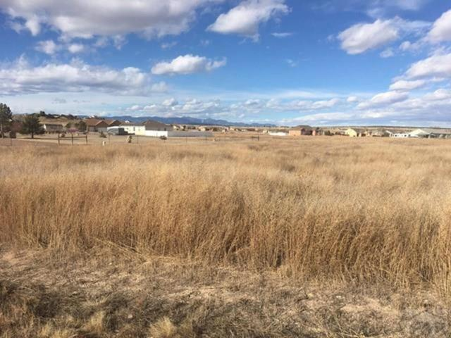 1670 W Alvarado Drive, Pueblo West, CO 81007 (#7743009) :: Structure CO Group