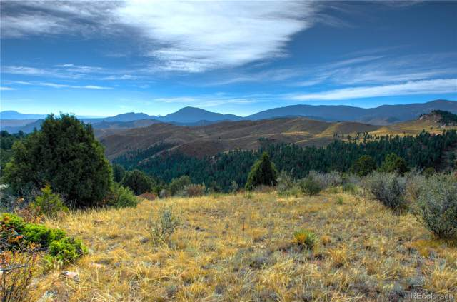 15004 Trinity Trail, Pine, CO 80470 (#7745797) :: The DeGrood Team