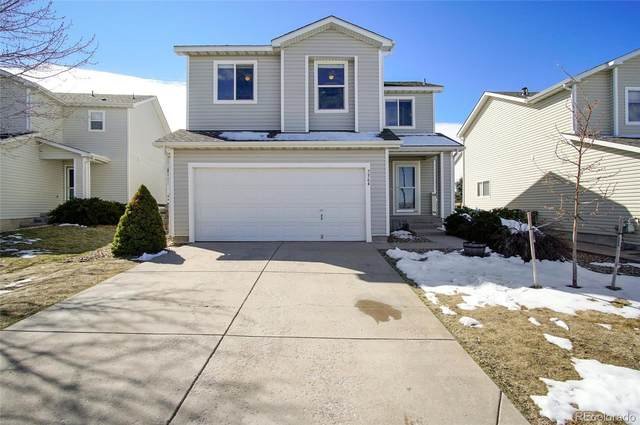 7564 Brown Bear Court, Littleton, CO 80125 (#7748618) :: The HomeSmiths Team - Keller Williams