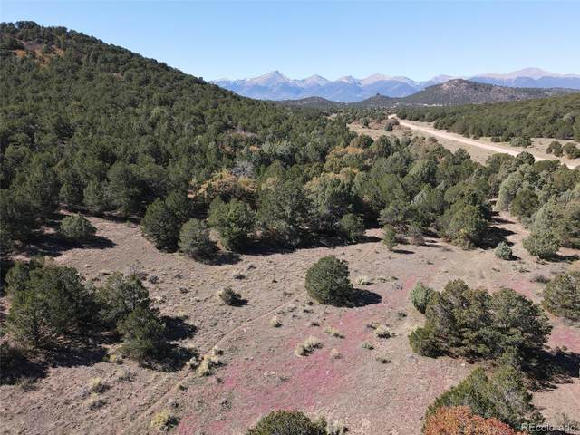 lot 33 Reed Road, Cotopaxi, CO 81223 (MLS #7750799) :: 8z Real Estate