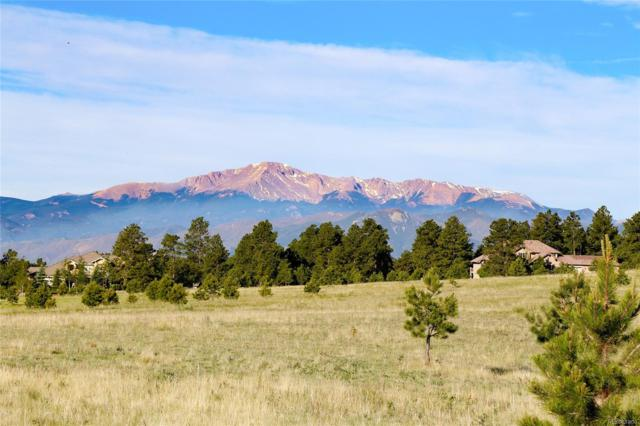 16191 Open Sky Way, Colorado Springs, CO 80908 (#7752764) :: The Peak Properties Group
