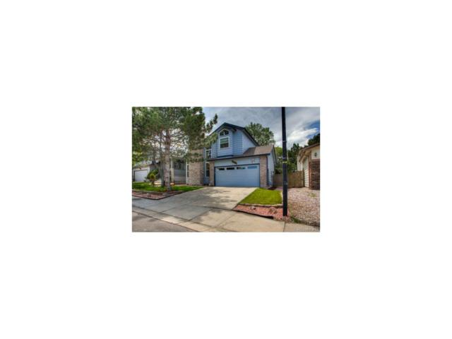 5061 N Silverlace Drive, Castle Rock, CO 80109 (#7754237) :: The Peak Properties Group