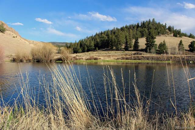 27500 Co Road 30Cc, Saguache, CO 81149 (#7758576) :: Colorado Home Finder Realty