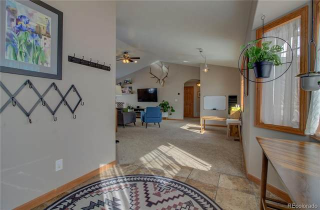 885 Dry Creek South Road, Hayden, CO 81639 (#7759139) :: The Dixon Group