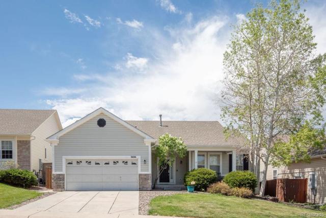 3686 Buffalo Grass Lane, Castle Rock, CO 80109 (#7760648) :: The Peak Properties Group