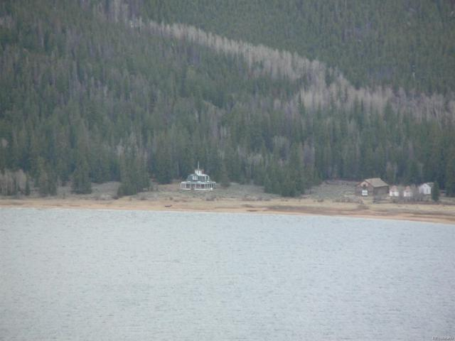 218 Mt. Massive Drive, Twin Lakes, CO 80251 (#7761466) :: The DeGrood Team