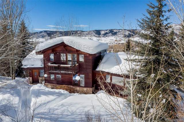 1854 Hunters Court, Steamboat Springs, CO 80487 (#7763451) :: Mile High Luxury Real Estate