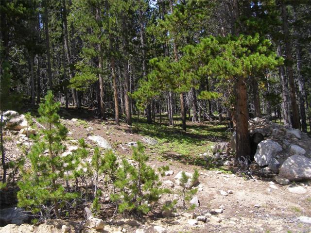 LOT 223 Eva Road, Idaho Springs, CO 80452 (MLS #7763548) :: 8z Real Estate