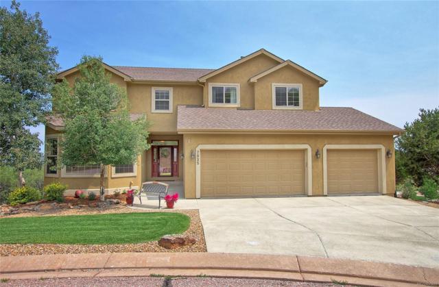 7925 Needlegrass Lane, Colorado Springs, CO 80919 (#7766083) :: The Peak Properties Group