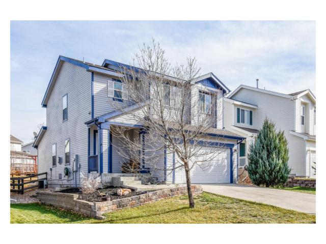 7296 Little Fawn Way, Littleton, CO 80125 (#7768830) :: The Sold By Simmons Team