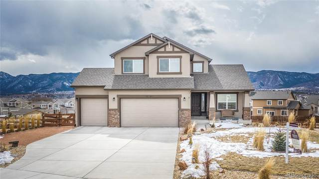 16796 Buffalo Valley Path, Monument, CO 80132 (#7768875) :: The DeGrood Team
