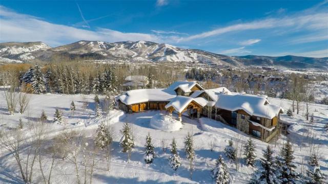 1055 Anglers Drive, Steamboat Springs, CO 80487 (#7772016) :: The Peak Properties Group