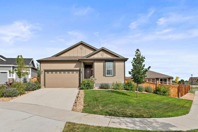 1905 S Danube Way, Aurora, CO 80013 (#7772721) :: Structure CO Group