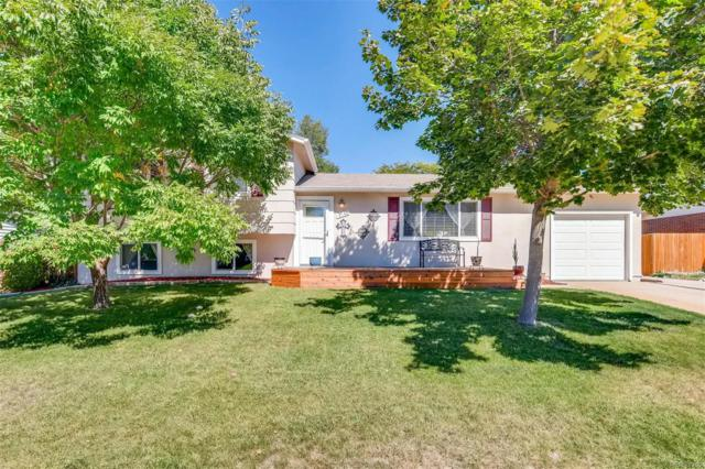 7146 S Franklin Street, Centennial, CO 80122 (#7772776) :: The City and Mountains Group