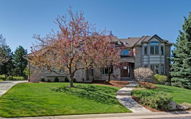 85 Falcon Hills Drive, Highlands Ranch, CO 80126 (#7773087) :: The DeGrood Team