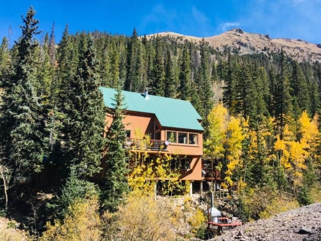 1781 Stevens Gulch Road, Silver Plume, CO 80476 (#7773185) :: Harling Real Estate