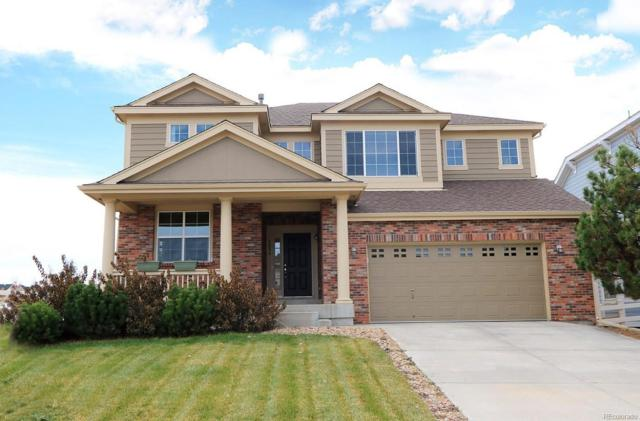 3886 Eagle Tail Lane, Castle Rock, CO 80104 (#7774193) :: The DeGrood Team