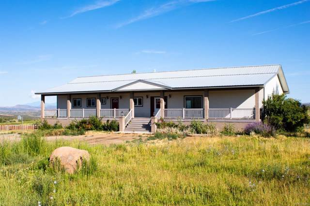33160 Highway 145, Red Vale, CO 81431 (#7779333) :: Wisdom Real Estate