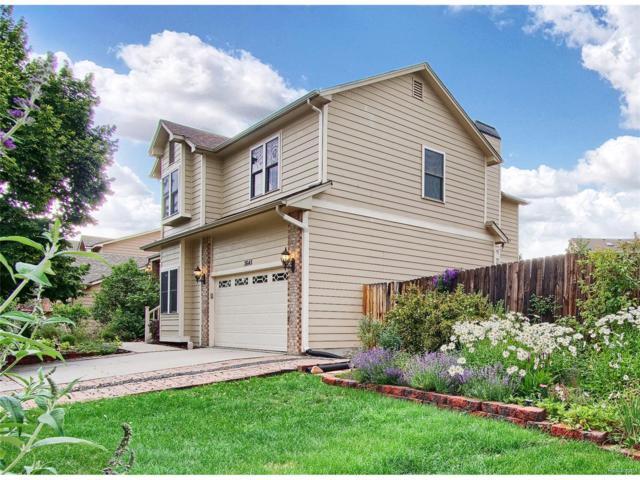 3645 Tapestry Terrace, Colorado Springs, CO 80918 (MLS #7787288) :: 8z Real Estate