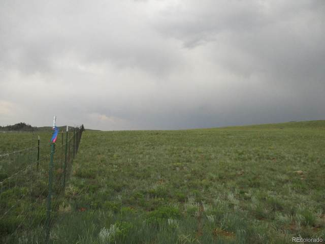 00 Antero Trail, Hartsel, CO 80449 (MLS #7787809) :: Bliss Realty Group