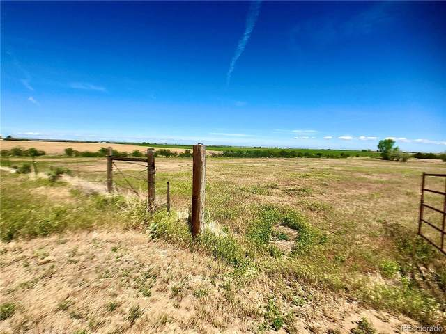 County Road J, Wiggins, CO 80654 (#7789537) :: The Healey Group