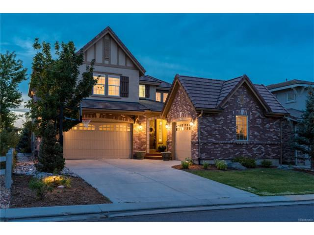 10487 Willowwisp Way, Highlands Ranch, CO 80126 (#7792520) :: The Peak Properties Group