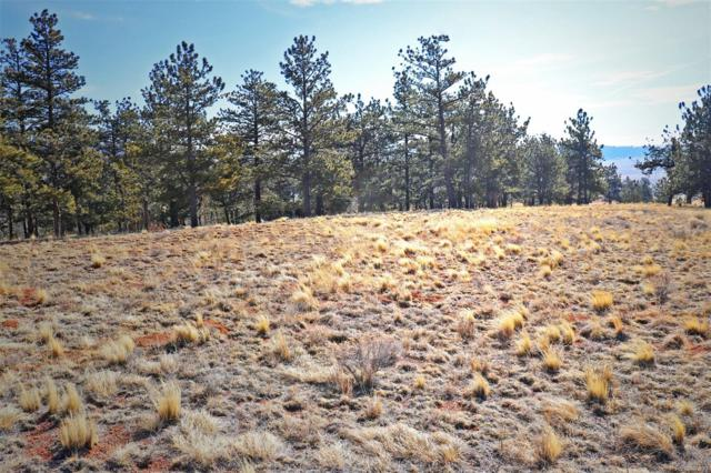 414 Wagon Wheel Road, Hartsel, CO 80449 (MLS #7796606) :: 8z Real Estate
