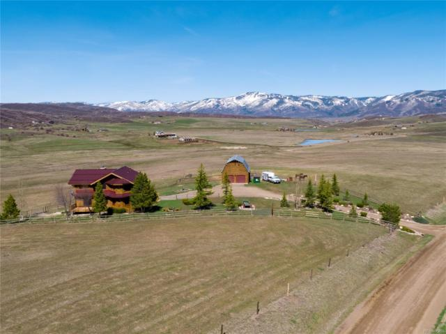27950 Whitecotton Lane, Steamboat Springs, CO 80487 (#7799216) :: Structure CO Group