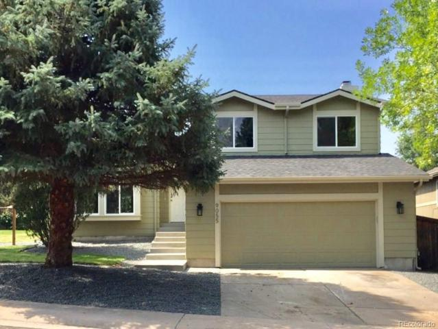 9055 Hunters Creek Street, Highlands Ranch, CO 80126 (#7799332) :: Structure CO Group