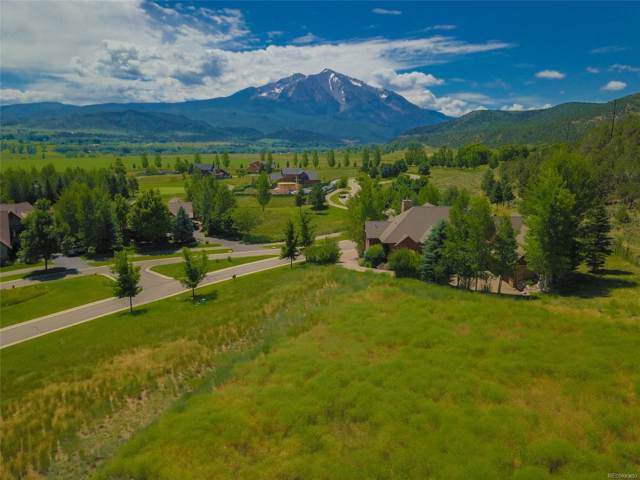 761 Perry Ridge Road, Carbondale, CO 81623 (#7800955) :: HomePopper
