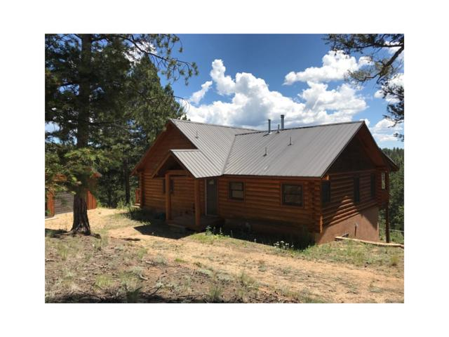 400 Woody Creek Road, Divide, CO 80814 (MLS #7803887) :: 8z Real Estate