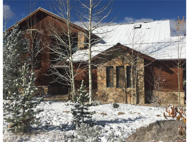 31 Saw Whiskers Circle, Keystone, CO 80435 (MLS #7804212) :: 8z Real Estate
