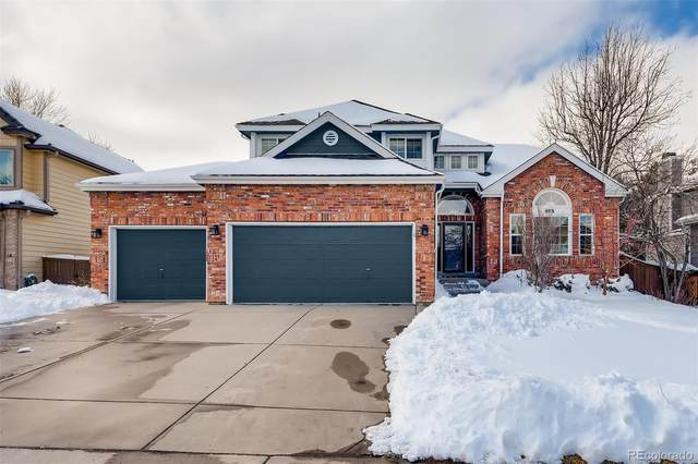 8931 Silver Court, Highlands Ranch, CO 80126 (#7806807) :: Hudson Stonegate Team