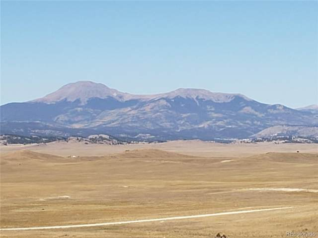 2400 Caddo Road, Hartsel, CO 80449 (#7810188) :: The DeGrood Team