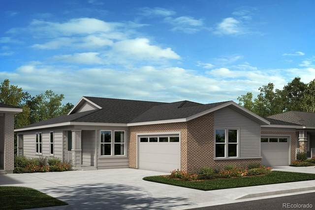 3915 Happy Hollow Drive, Castle Rock, CO 80104 (#7818041) :: Wisdom Real Estate