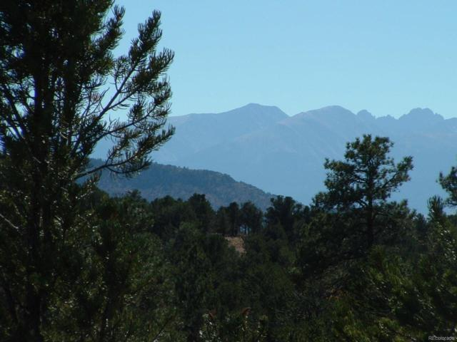 # Cody Park Court, Cotopaxi, CO 81223 (#7818239) :: Mile High Luxury Real Estate