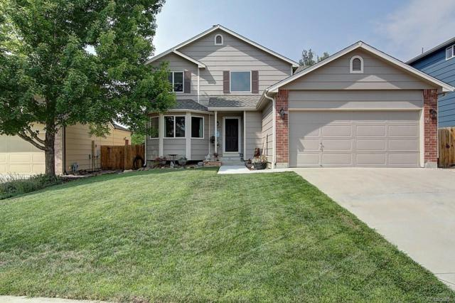 23225 Blackwolf Way, Parker, CO 80138 (#7820843) :: The Pete Cook Home Group