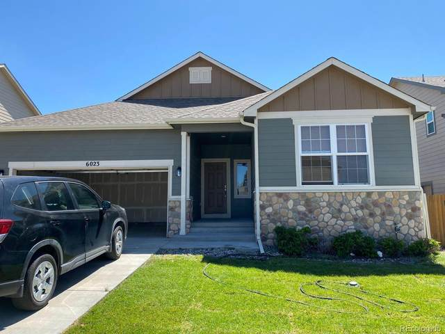 6023 San Mateo Drive, Colorado Springs, CO 80911 (#7821159) :: The Griffith Home Team