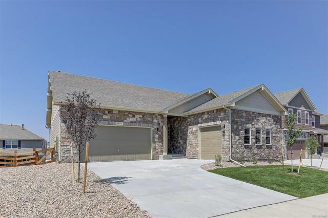 1839 Pinion Wing Circle, Castle Rock, CO 80108 (#7822445) :: Colorado Home Finder Realty