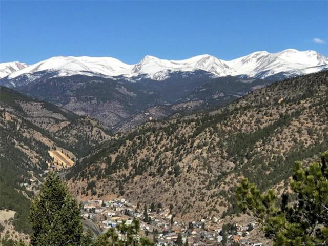 Hidden Wilderness Road, Idaho Springs, CO 80452 (#7832332) :: Mile High Luxury Real Estate