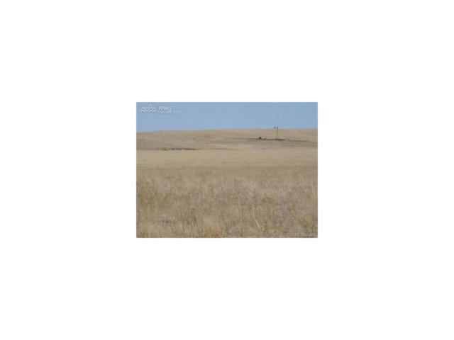 35443 E Hwy 24, Ramah, CO 80832 (MLS #7837399) :: 8z Real Estate