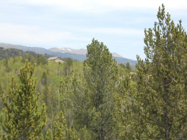 139 Wellington Drive, Cripple Creek, CO 80813 (#7838136) :: Bring Home Denver